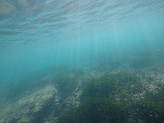 Fondo Del Mar ROV